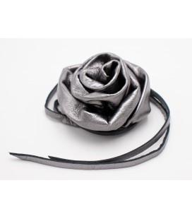 Rosa Charm
